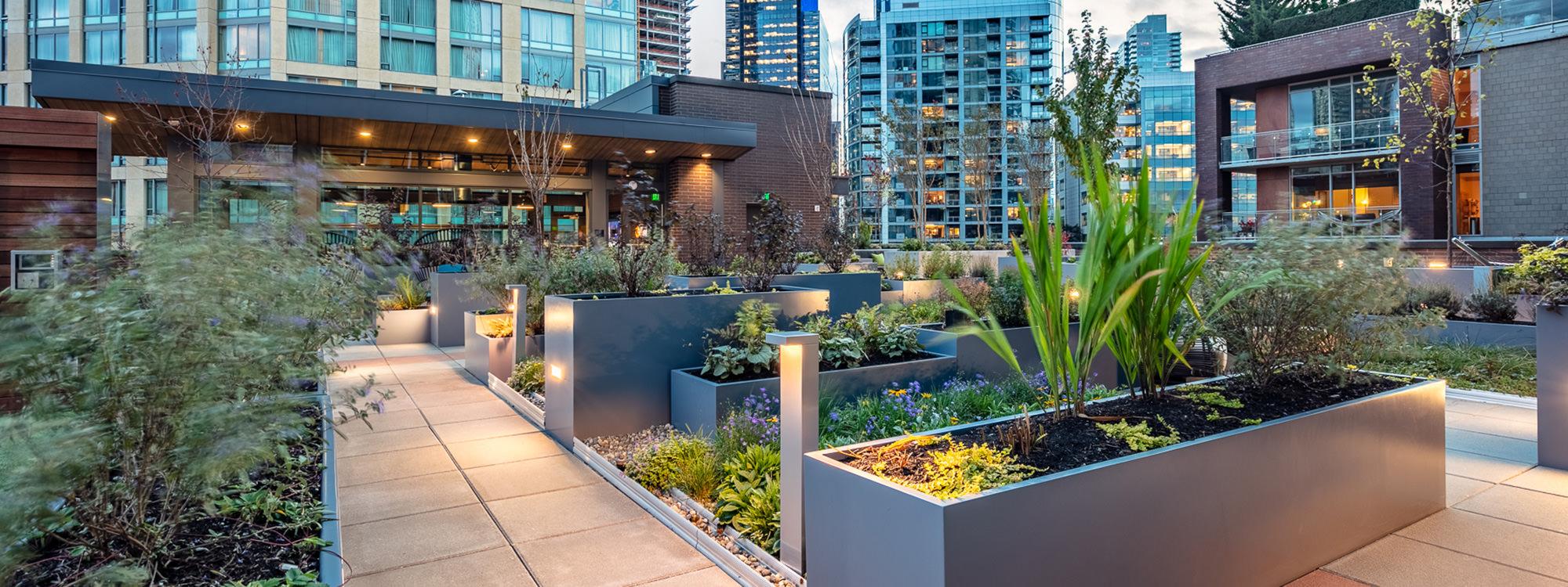 Kiara Landscape Architecture